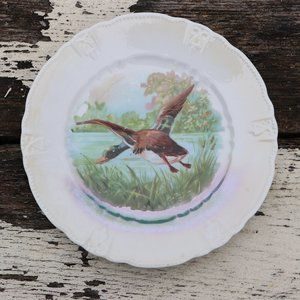 Vintage 1900s Unmarked Hand Painted Duck Plate